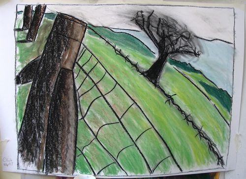 blown tree A1