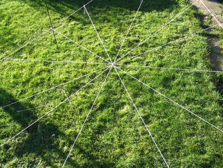 closer view of spiders web in progress