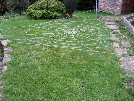 spiders web completed